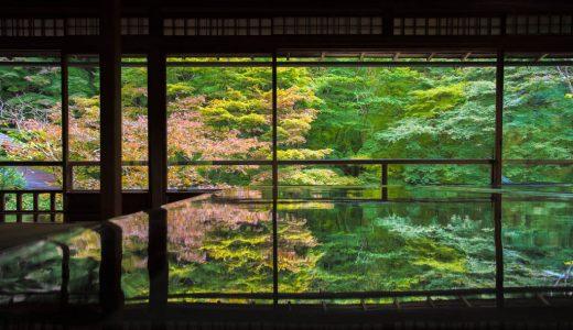 2ヶ月間だけの幻の絶景!京都・瑠璃光院の特別拝観に行ってきた話。