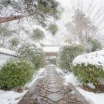 真っ白な古都の美しさに感動!雪の京都を撮り歩いてきた話。