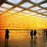 10周年を彩る異空間!国立新美術館の『数字の森』を撮ってきた話。