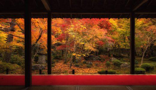 額縁構図に萌える秋!京都の紅葉を撮り歩いてきた話。