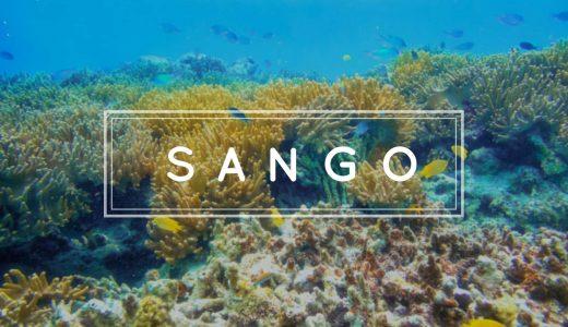 【ブログデザイン変更】私がSimplicity2からSANGOに変えて気付いたこと全部まとめてみた!