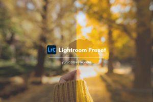 『なんかいい感じになるLightroomプリセット』を作りました