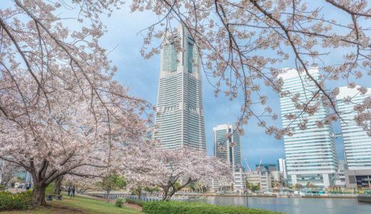 RAW現像で桜のピンクを再現する方法と、この春撮った桜の話